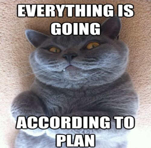 "FUNNY CAT MEME /""ACCORDING TO PLAN/"" FRIDGE MAGNET 5/' X 3.5/'"