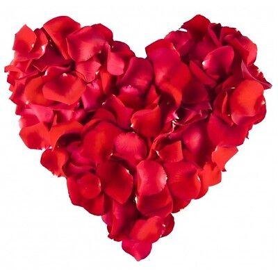 5.000 Künstliche Rosenblätter Rot Rosen-blätter Rosenblüten Blüten Dekoration