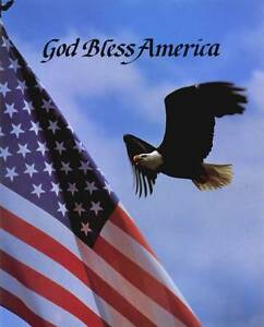 God Bless America Bald Eagle And American Flag 8x10 In Patriotic