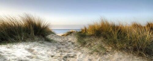 Wallario selbstklebendes Poster 50 x 125 cm Weg durch die Dünen zum Strand am