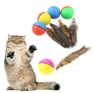 Funny-Attractive-Cat-Puppy-Toy-Interactive-Pet-Chaser-Self-Rolling-Beaver-Ball
