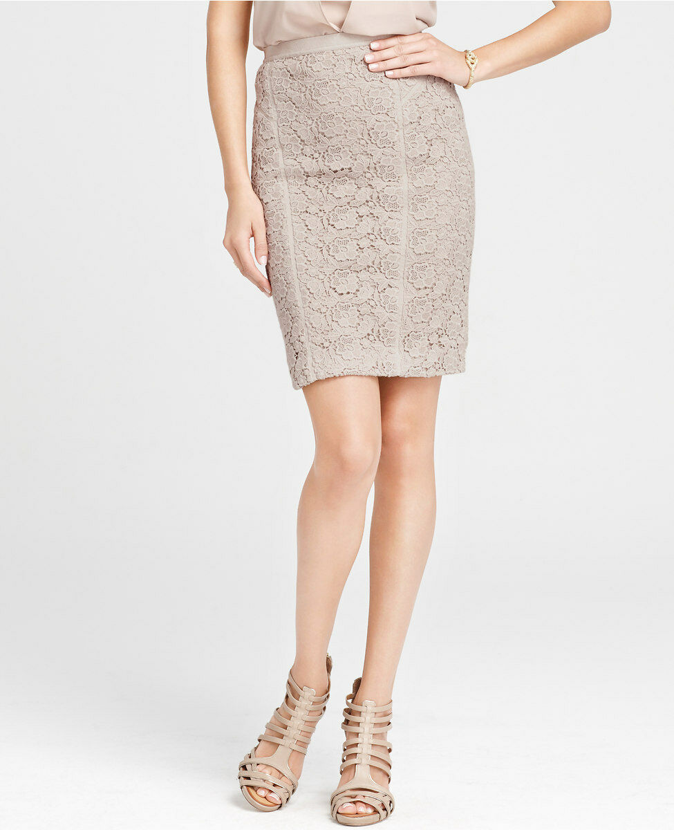 Ann Taylor Ornate Vintage Lace Pencil Skirt Size 12 Petite, 12 Regular NWT