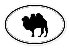 "Camel Oval car window bumper sticker decal 5"" x 3"""