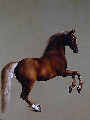 Two horses G ARA Accent Tile Mural Bathroom Wall Backsplash Art Marble Ceramic