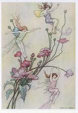 Warwick Goble Fairy book 1920 repro A5 glossy Photo Print 3 flower fairy spirits