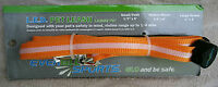 Everglo Sports Led Pet Leash For Medium Dogs orange