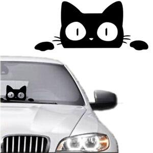 14CM-6-2CM-Surprise-Cat-Peeking-Funny-Vinyl-Decal-Sticker-Car-Truck-Laptop-New