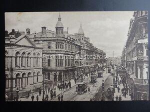 Northern-Ireland-BELFAST-Royal-Avenue-c1906-Postcard-by-W-E-Walton