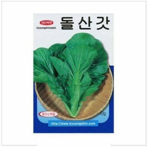 Leaf Mustard 10g Garden Home Plant Vegitable Seeds/_IU
