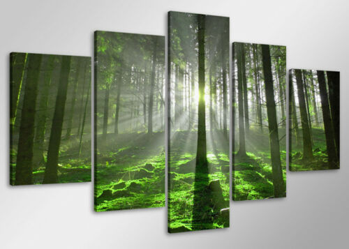 MOTIFS différents images 1581 c2 toile images prête à encadrer dans 100 CM