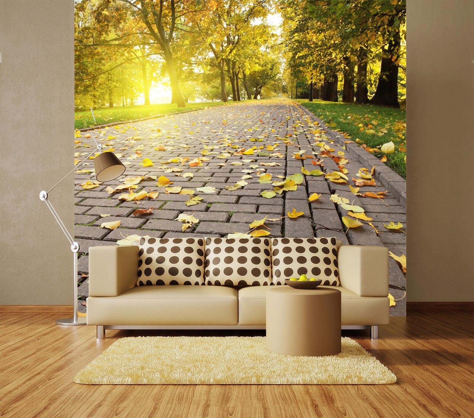 3D Deciduous Road 755 Wall Paper Murals Wall Print Wall Wallpaper Mural AU Kyra