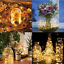 50-100-LED-Wire-String-Lights-Fairy-Christmas-Party-Decor-Holiday-Wedding-Supply thumbnail 2