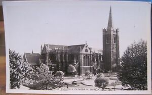 Irish RPPC Postcard ST PATRICK'S CATHEDRAL View Trees ...
