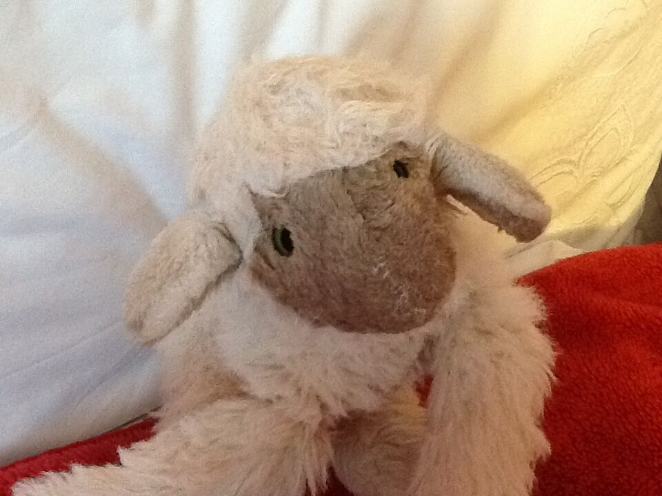COLLECTABLE VINTGE VINTGE VINTGE 11  STEIFF SHEEP 5b1403