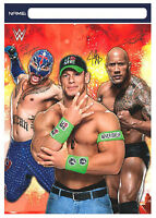 American Greetings Wwe Favor / Loot Bags Boy Birthday Party Decoration Supplies