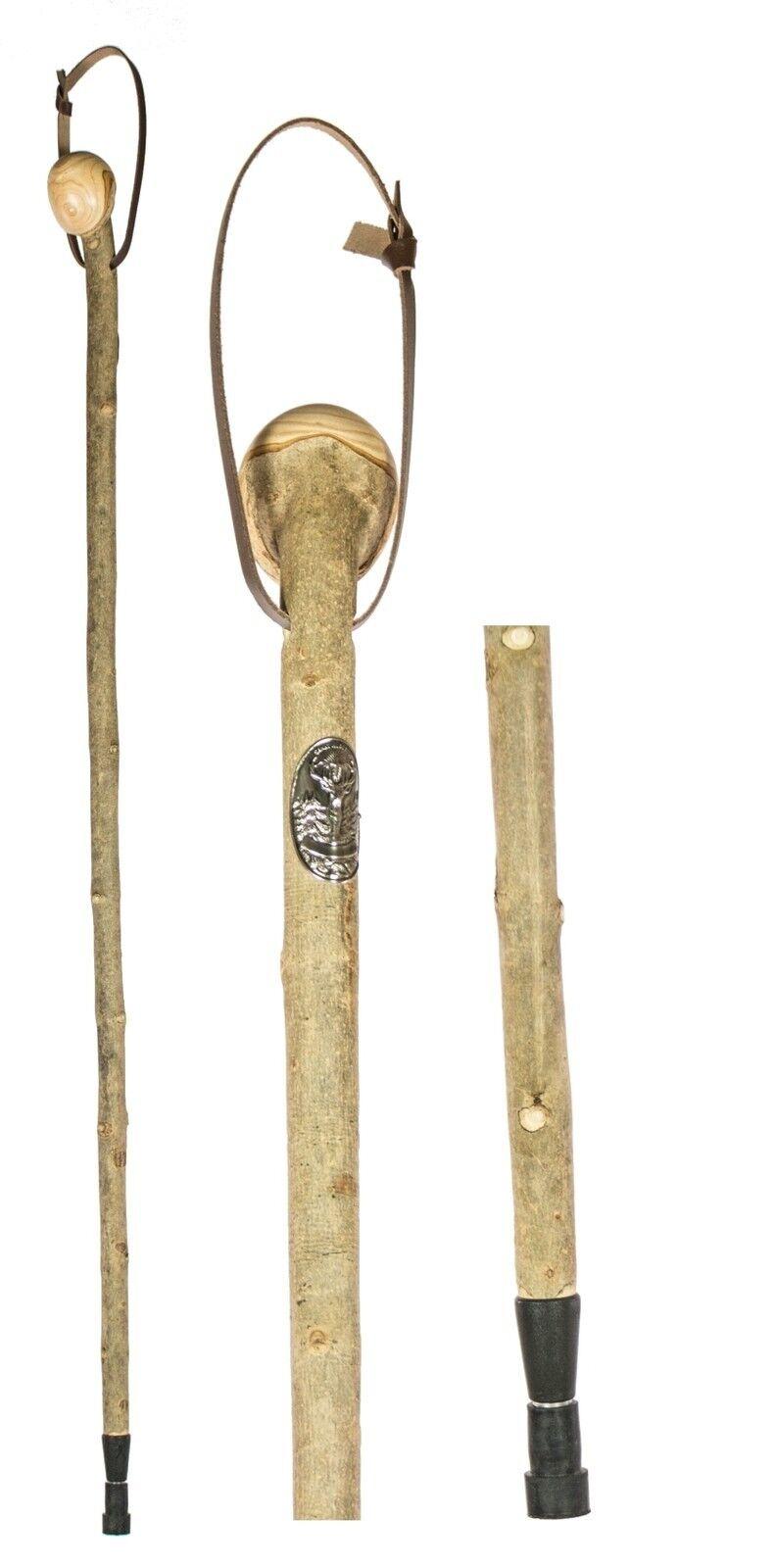 Controlador - & telescópicos raíz bastón con hubertusstocknagel fresno rindenecht