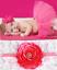 NEW-Beautiful-Baby-Tutu-amp-Matching-Flower-Headband-Photo-Props-20-Colours-UK thumbnail 34