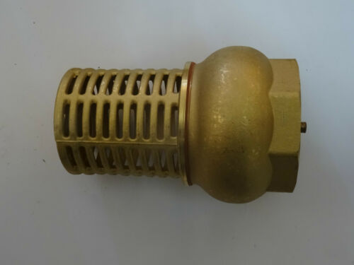 "2 12"" Brass Foot Valve"
