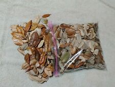 Gallon BAG #1 ORGANIC OAK MAPLE MIX LEAF LITTER Terrarium Dart Frog VIVARIUM