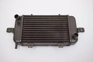 radiador-del-motor-Radiador-Enfriador-BMW-C1-125-200