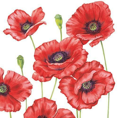 5 Napkins Poppies White 33 x 33cm Tissue Decoupage Paper Party Card Making Craft
