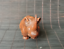 thumbnail 3 - Chinese Natural Boxwood Hand carved Exquisite Rhinoceros Statue