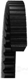 Details about Accessory Drive Belt Dayco 22395