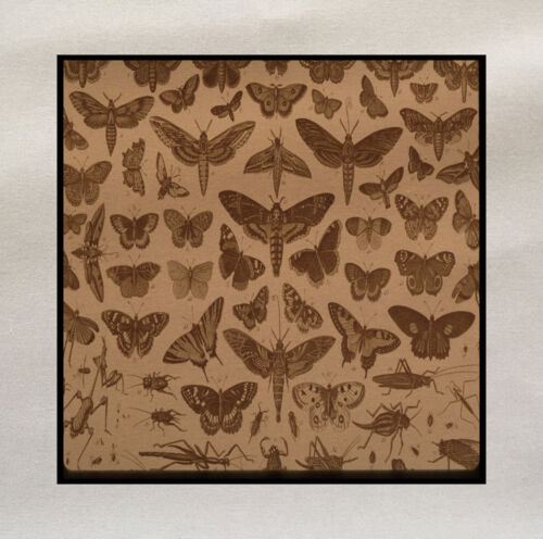 Insects Printed On Fabric Panel Make A Cushion Upholstery Craft