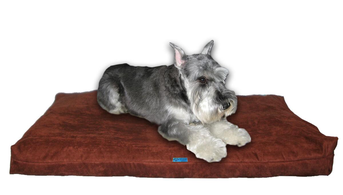 Shrotded Memory Foam Orthopedic Dog Bed for Medium Dogs,37 x27 ,braun Microfiber