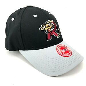 Wisconsin-Timber-Rattlers-Outdoor-Cap-Hat-Youth-Size-Strapback-Curved-Brim-Logo
