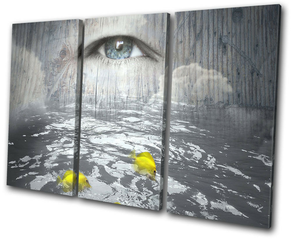 Eye Fish Sea Surreal Concept    Fantasy TREBLE TELA parete arte foto stampa ac757d