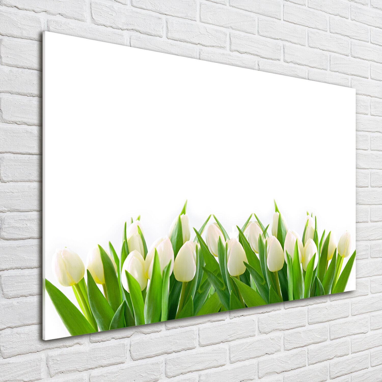 Wandbild aus Plexiglas® Druck auf Acryl 100x70 Blaumen & Pflanzen Weiße Tulpen