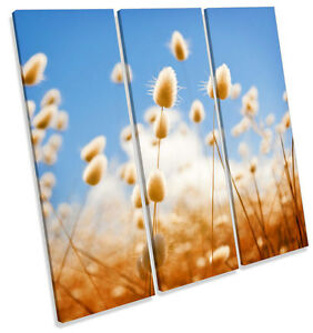 Wild-Grass-Summer-Floral-CANVAS-WALL-ART-TREBLE-Square-Print-Picture