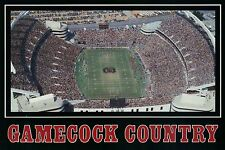 Williams-Brice Stadium, University of South Carolina, Columbia, SC --- Postcard