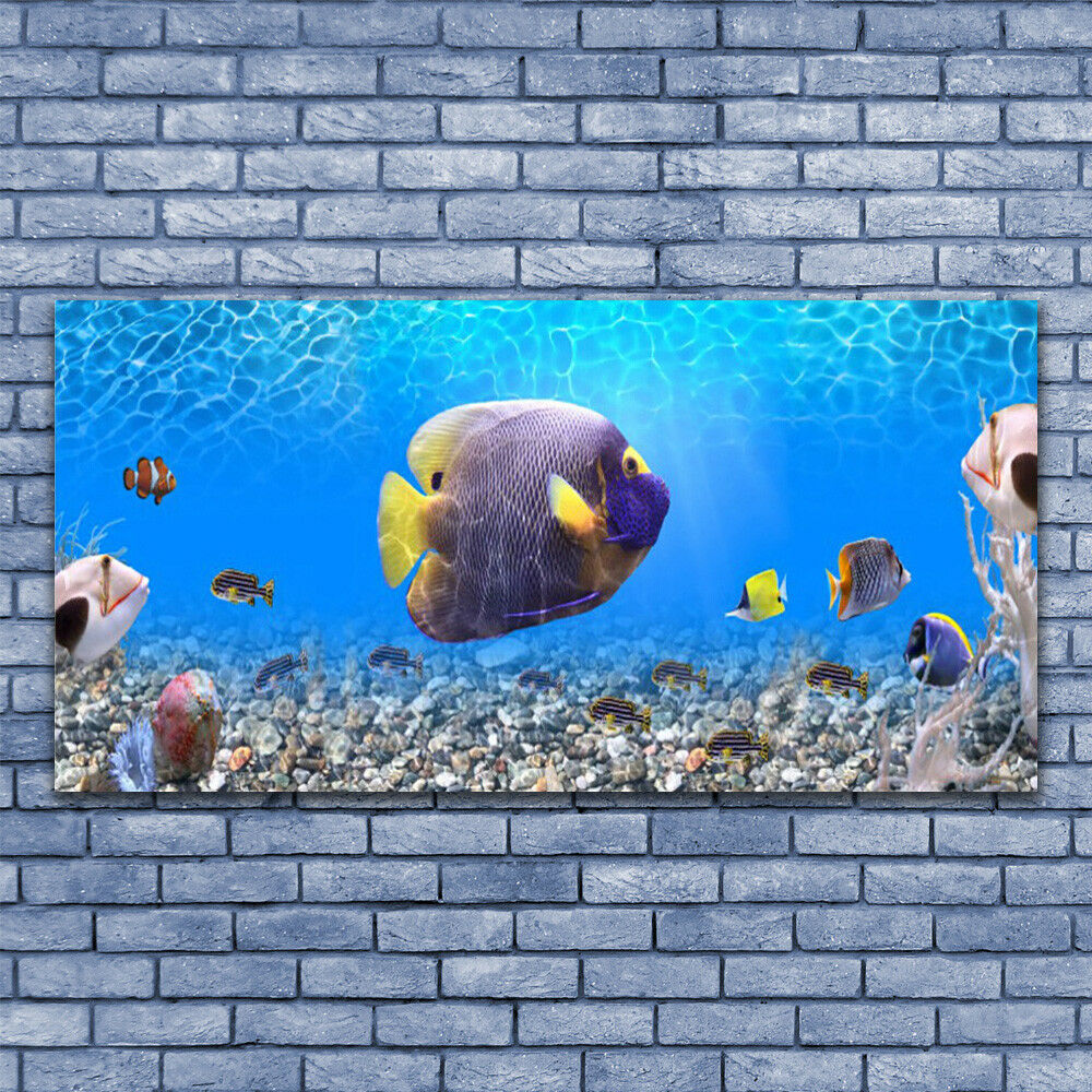 Canvas print Wall art on 140x70 Image Picture Fish Nature