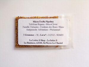 Micro-Clover - Engra - SEM05 Micro-Trèfle Pipolina Enrobé Trifolium Repens