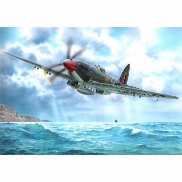 Special Hobby Spec72231 Seafire Fr Mk.46 1/72