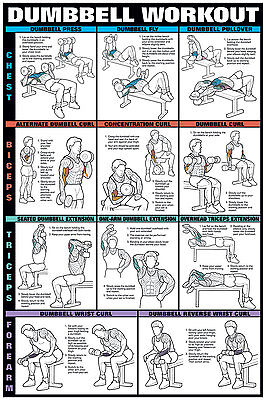 """dumbbell workout i 24"""" x 36"""" paper poster nfc12a"""