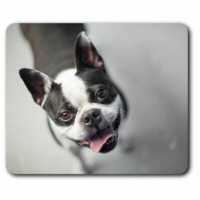 Husky Dog puppy basket flowers cute Art Rubber anti-slip PC laptop mouse mat pad