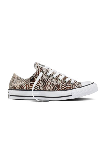 Converse Ledersneaker CT AS OX 557982C Weiß Braun