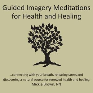 Mickie-Brown-Guided-Imagery-Meditations-for-Health-amp-Healing-New-CD-Duplicat