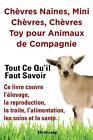 Chèvres naines, mini chèvres, chèvres toy pour animaux de compagnie. Tout ce qu'il faut savoir. Ce livre couvre l'élevage, la reproduction, la traite, von Elliott Lang (2014, Taschenbuch)