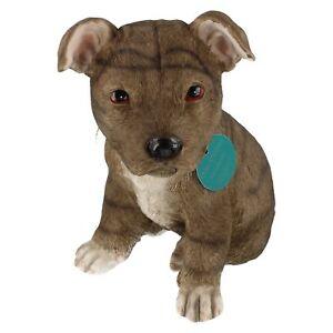 leonardo dog studies ornament staffordshire bull terrier staffy