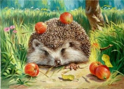 Hedgehog Paint By Numbers Kits DIY Number Canvas Hand Painting Animals Autumn