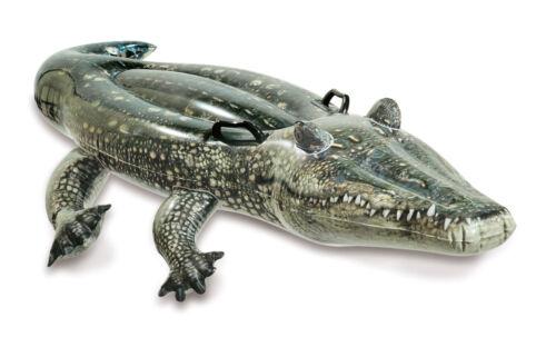 Intex Schmimmtier Pool Aufblastier Krokodil mit Fotoprint NEU ovp 227926 Kinderbadespaß