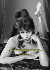 Vanessa-del-Rio-Photo-Collectible-BARBARA-NITKE-8x10-Sign-Aft-BUY-w-COA