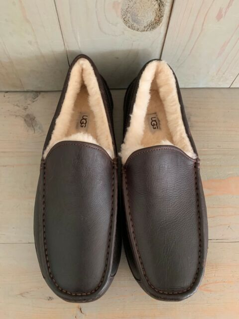 UGG ASCOT  CHINA TEA, BROWN  LEATHER SHEEPSKIN  SLIPPERS MENS US 12 NIB
