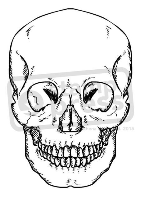 A7 'Forward Facing Skull' Unmounted Rubber Stamp (SP00000133)