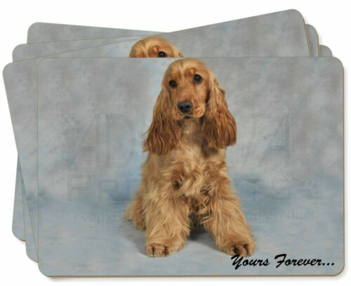 Apricot Cocker Spaniel 'Yours Forever' Picture Placemats in Gift Box, ADSC6yP