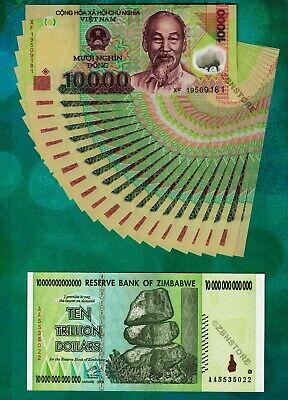 20 x 10,000 Vietnam Dong UNC Uncirculated 10 Trillion Zimbabwe Dollars Banknote